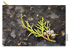 Carry-all Pouch featuring the photograph Missing Christmas by Meghan at FireBonnet Art