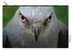 Mississippi Kite Stare Carry-all Pouch by Liz Masoner
