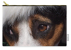 Mojo's New Holiday Coat Carry-all Pouch by Claudia Goodell