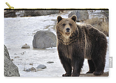Montana Grizzly  Carry-all Pouch