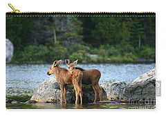Moose Calves In Maine Carry-all Pouch by Jeannette Hunt