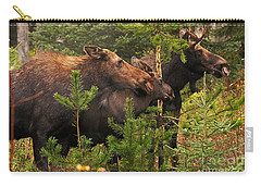 Moose Family At The Shredded Pine Carry-all Pouch