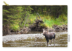 Moose In Yellowstone National Park   Carry-all Pouch by Lars Lentz