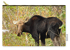 Carry-all Pouch featuring the photograph Moose by James Peterson