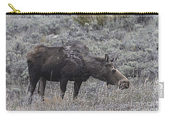 A Grazing Moose Carry-all Pouch