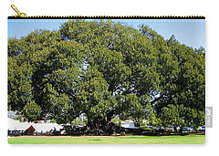 Moreton Fig Tree In Santa Barbara Carry-all Pouch