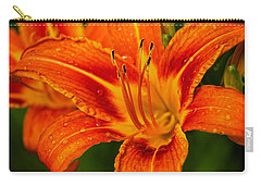 Carry-all Pouch featuring the photograph Morning Dew by Dave Files