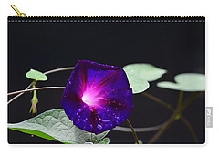 Morning Glory - Grandpa Ott's Carry-all Pouch