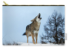 Carry-all Pouch featuring the photograph Morning Howl by Jack Bell