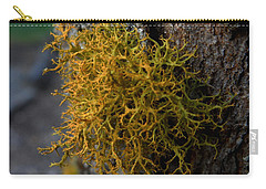 Moss On Tree Carry-all Pouch by Pamela Walton