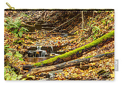 Mossy Log And Stream Carry-all Pouch