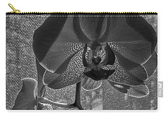 Carry-all Pouch featuring the photograph Moth Orchid In Window by Ron White