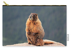 Mother Marmot Carry-all Pouch