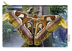 Atlas Moth Carry-all Pouch