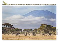 Mount Kilimanjaro Amboseli  Carry-all Pouch