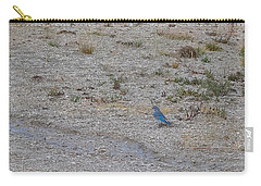 Mountain Bluebird  Carry-all Pouch by Lars Lentz