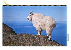 Carry-all Pouch featuring the photograph Mountain Goat On Klahane Ridge by Jeff Goulden
