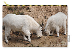 Carry-all Pouch featuring the photograph Mountain Goats At The Salt Lick by Vivian Christopher