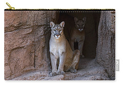 Carry-all Pouch featuring the photograph Mountain Lion 1 by Arterra Picture Library