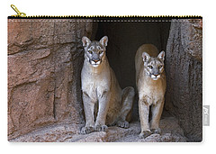 Carry-all Pouch featuring the photograph Mountain Lion 2 by Arterra Picture Library