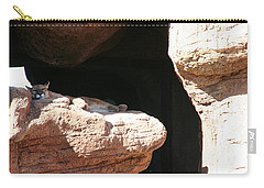 Carry-all Pouch featuring the photograph Mountain Lion by David S Reynolds
