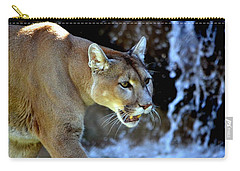 Mountain Lion Carry-all Pouch by Deena Stoddard