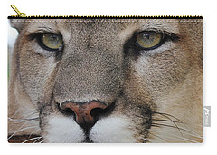 Mountain Lion Portrait 2 Carry-all Pouch by Diane Alexander