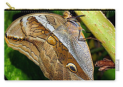 Carry-all Pouch featuring the photograph Mournful Owl Butterfly by Amy McDaniel