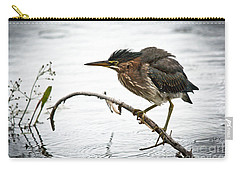 Mr. Green Heron Carry-all Pouch by Cheryl Baxter