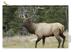 Mr Majestic Carry-all Pouch by Bob Christopher