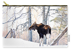 Mr. Moose Carry-all Pouch by Cheryl Baxter