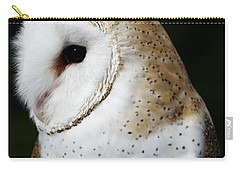 Mr Owl  Carry-all Pouch