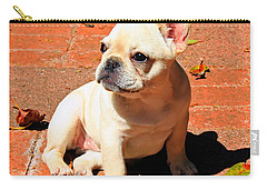 Ms. Quiggly Carry-all Pouch
