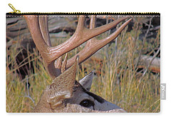 Carry-all Pouch featuring the photograph Mule Deer by Lynn Sprowl
