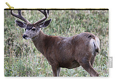 Muley Buck Carry-all Pouch