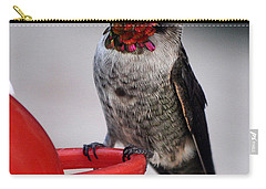 Carry-all Pouch featuring the photograph Multi Colored Hummingbird Male Anna by Jay Milo