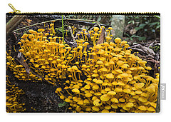 Mushrooms On Tree Trunk Panguana Nature Carry-all Pouch by Konrad Wothe