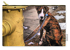 Carry-all Pouch featuring the photograph My Friend Plug by Robert McCubbin