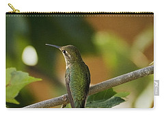 My Green Colored Hummingbird 4 Carry-all Pouch