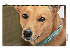 Dog - Cookie One Carry-all Pouch