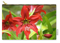 My Red Daylily...after The Rain Carry-all Pouch