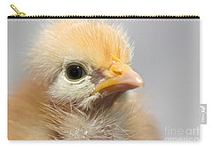 Naked Neck Chick Carry-all Pouch