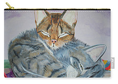 Carry-all Pouch featuring the painting Nap Time by Thomas J Herring