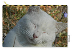 Carry-all Pouch featuring the photograph Napping Barn Cat by Kathy Barney