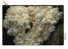 Natural Sculpture Carry-all Pouch