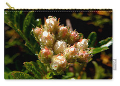 Nature's Drink Carry-all Pouch by Pamela Walton