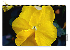 Nature's Light Carry-all Pouch