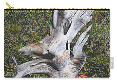 Nepenthes Bird Carry-all Pouch by Barbara Snyder
