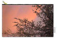 Nevada Sunrise Carry-all Pouch