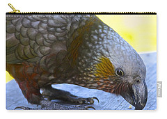 New Zealand Kaka Happy Hour Carry-all Pouch